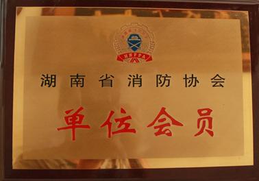 湖南消防协会会员